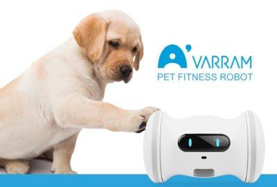 VARRAM Pet Fitness Robot: per far divertire il nostro cane o gatto quando siamo assenti